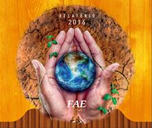 Relatório FAE Social 2016