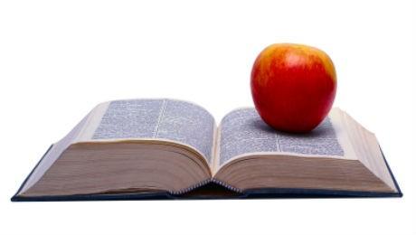 Na próxima semana, docentes da FAE Curitiba e São José dos Pinhais retomam suas atividades acadêmicas.